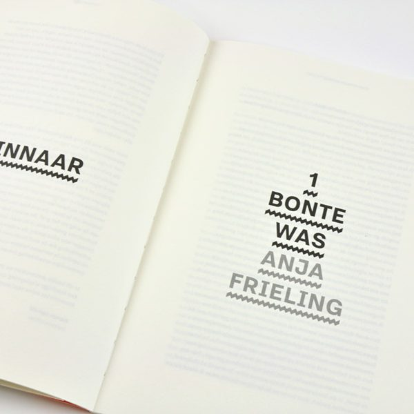 Prijs voor Eindhovens Schrijftalent 2016